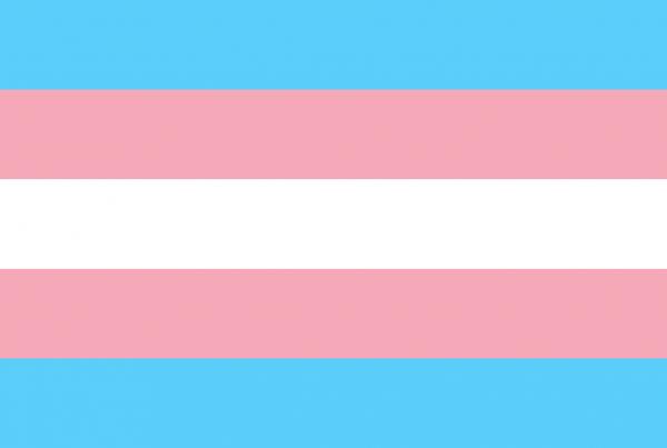 transgender flag - 2020 election victories
